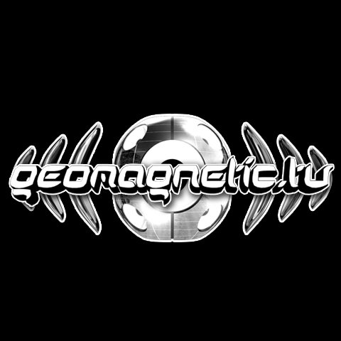 Geomagnetic Records