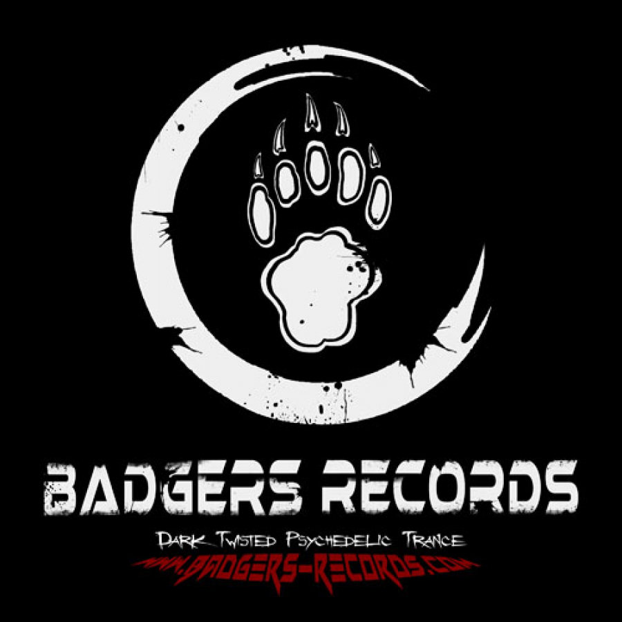 Badgers Records