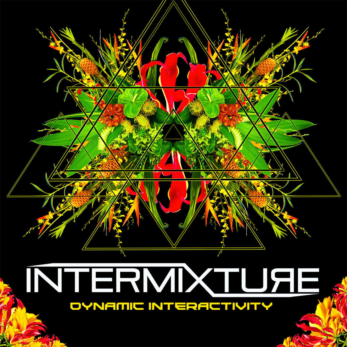 Intermixture - A Greater Reality @ 'Dynamic Interactivity' album (bass, electronic)