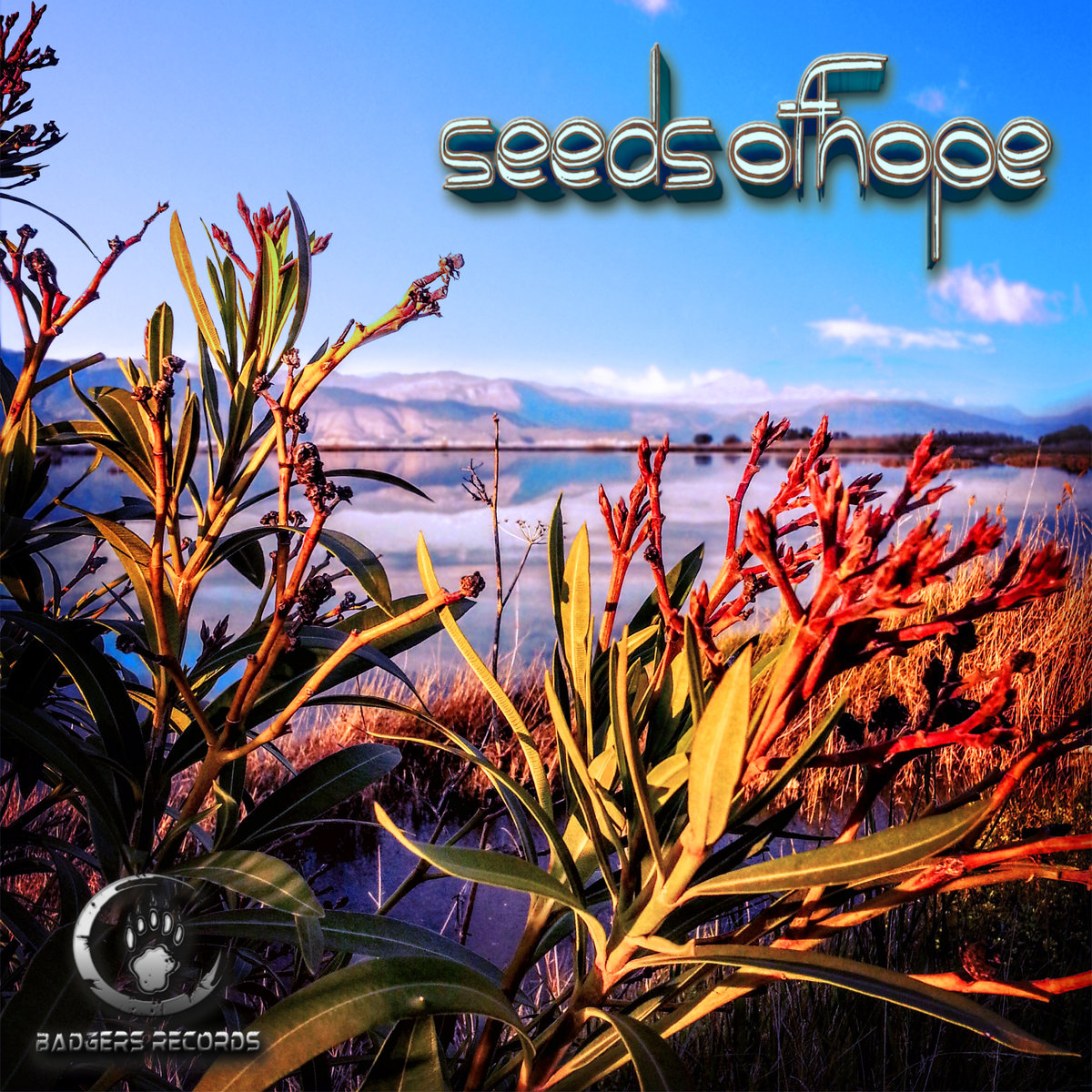 Flowertz - Time To Change @ 'Various Artists - Seeds Of Hope' album (dark psy, downtempo)