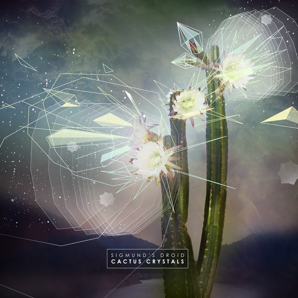 Sigmund's Droid - Caravan @ 'Cactus Crystals' album (electronic, dubstep)