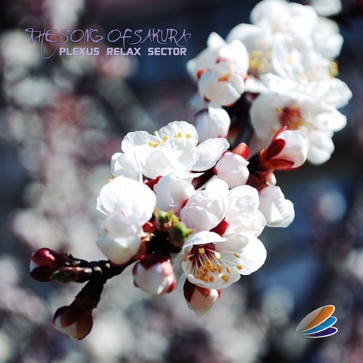 Plexus Relax Sector - The Song Of Sakura