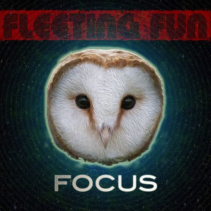 Fleeting Fun - Chinese Jeans @ 'Focus' album (bass, chill)