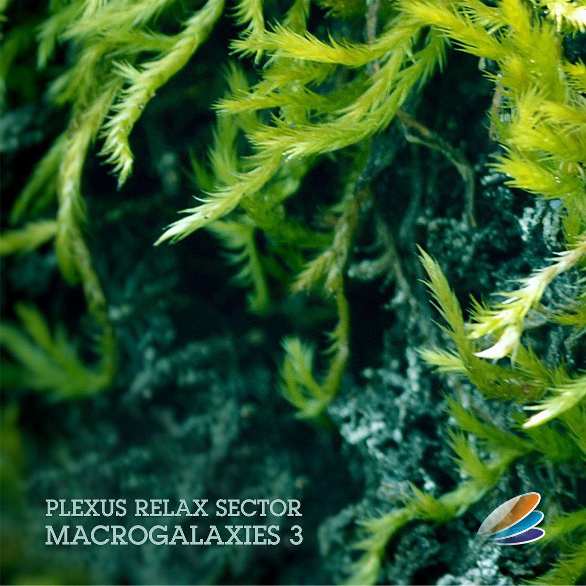 Plexus Relax Sector - Macrogalaxies 3