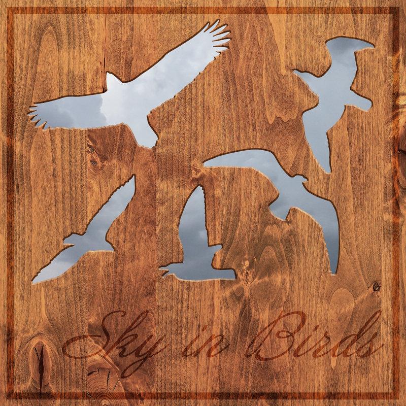 Sky in Birds - Sky in Birds