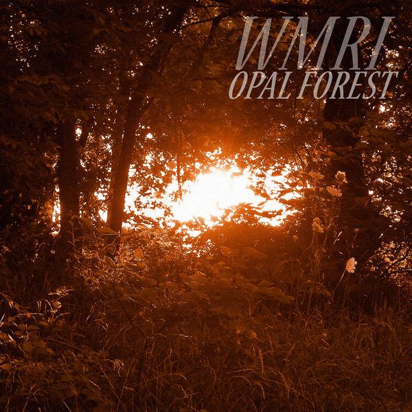 WMRI - Opal Forest