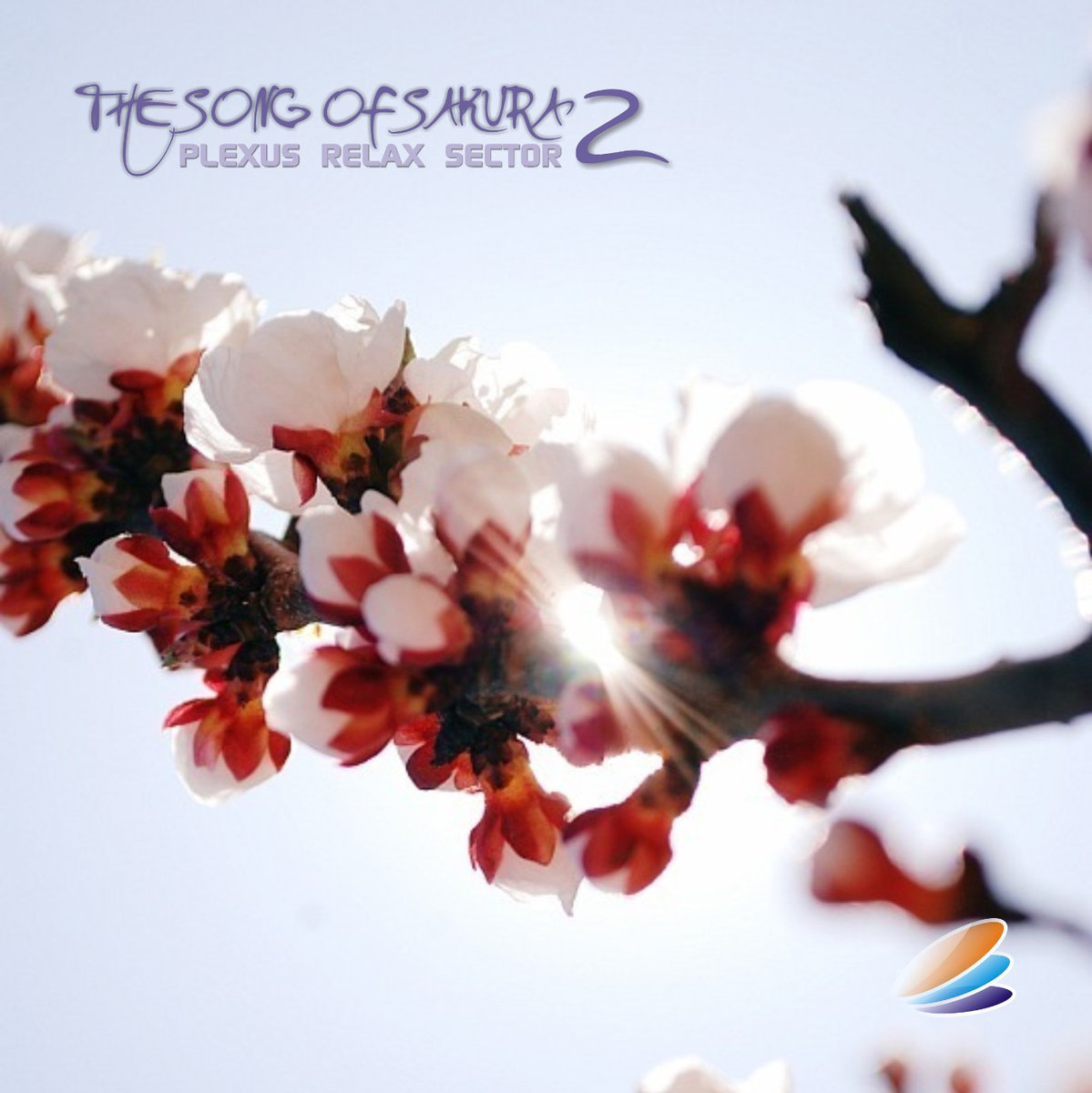 Plexus Relax Sector - The Song Of Sakura - 2