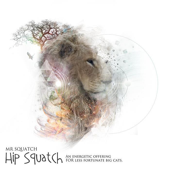 Mr Squatch - Hip Squatch @ 'Hip Squatch' album (electronic, ambient)