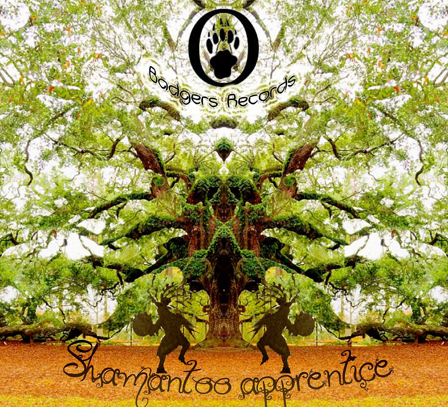 Various Artists - Shamantoo Apprentice