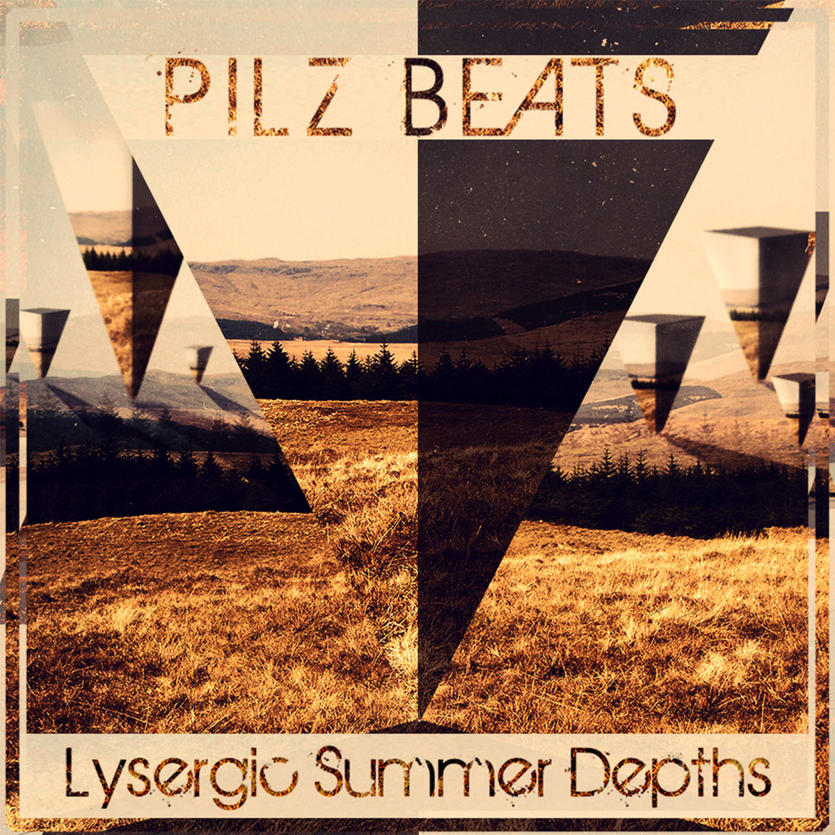 Pilz Beats - I Want to Go to Heaven (but I'm scared to fly) @ 'Lysergic Summer Depths' album (bass, downtempo)