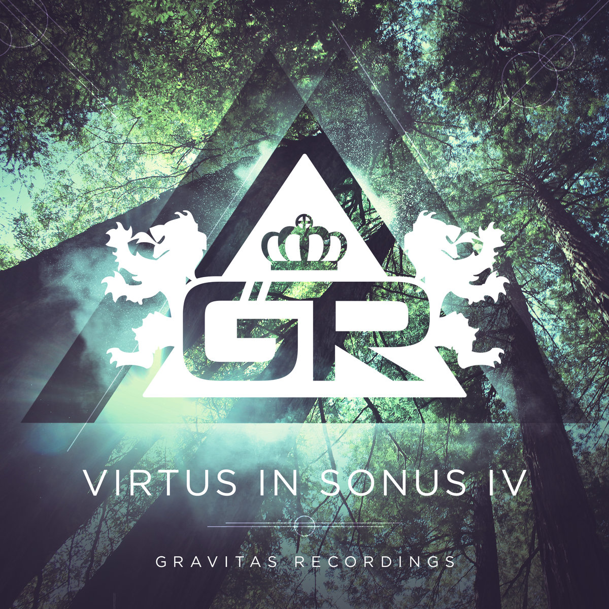 Psymbionic & Esseks - Static @ 'Virtus In Sonus IV' album (Austin)