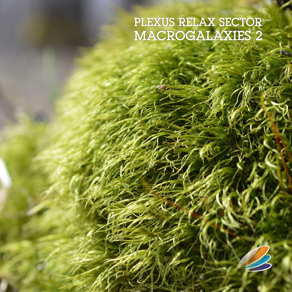 Plexus Relax Sector - Macrogalaxies 2