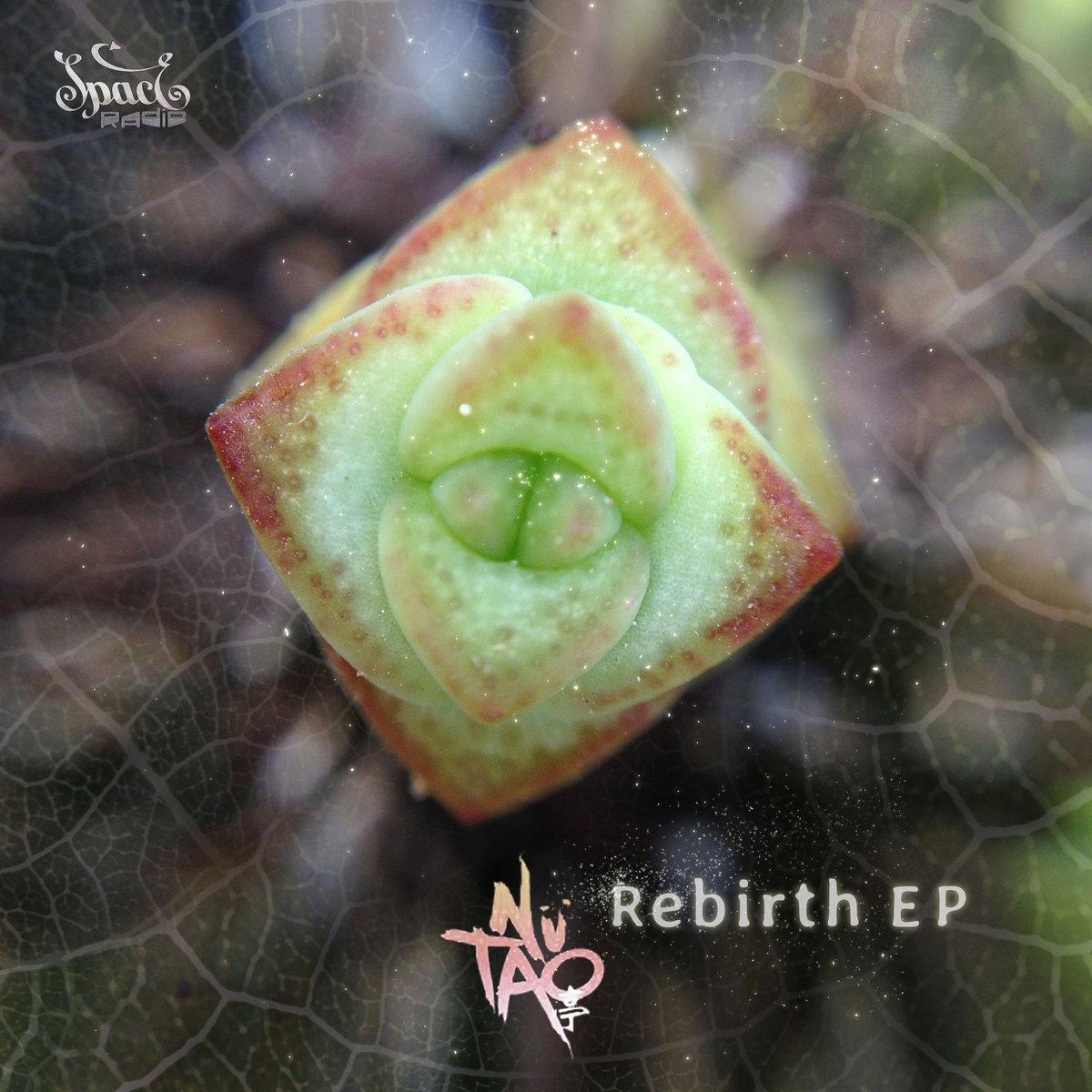 nü tao - Rebirth EP