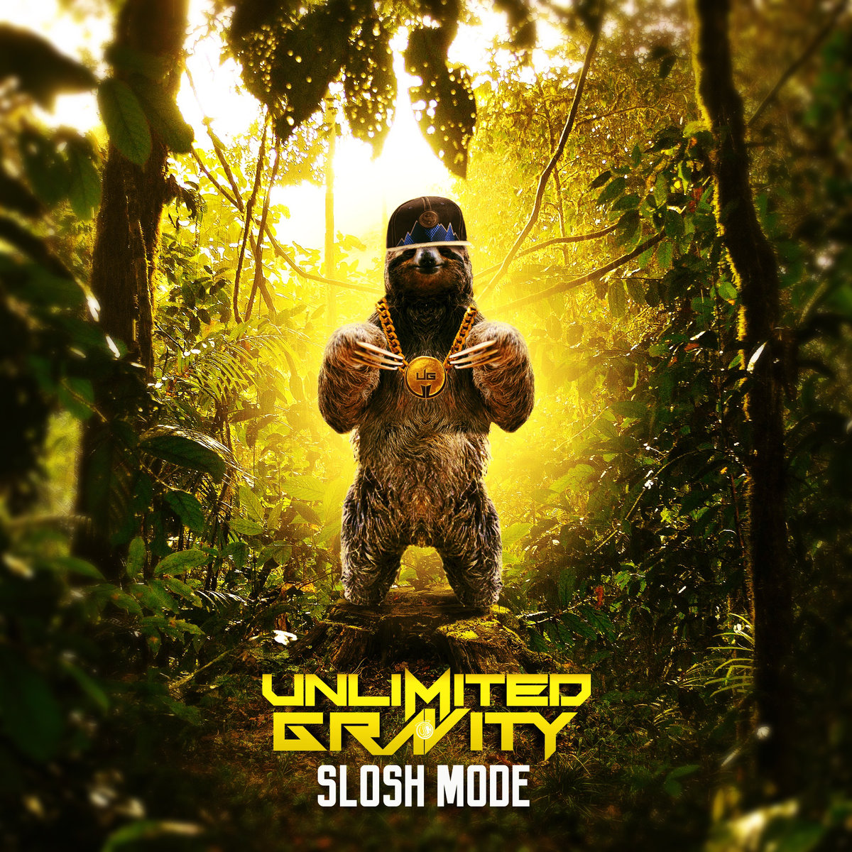 Unlimited Gravity - Down Low w/ Psymbionic @ 'Slosh Mode' album (Austin)