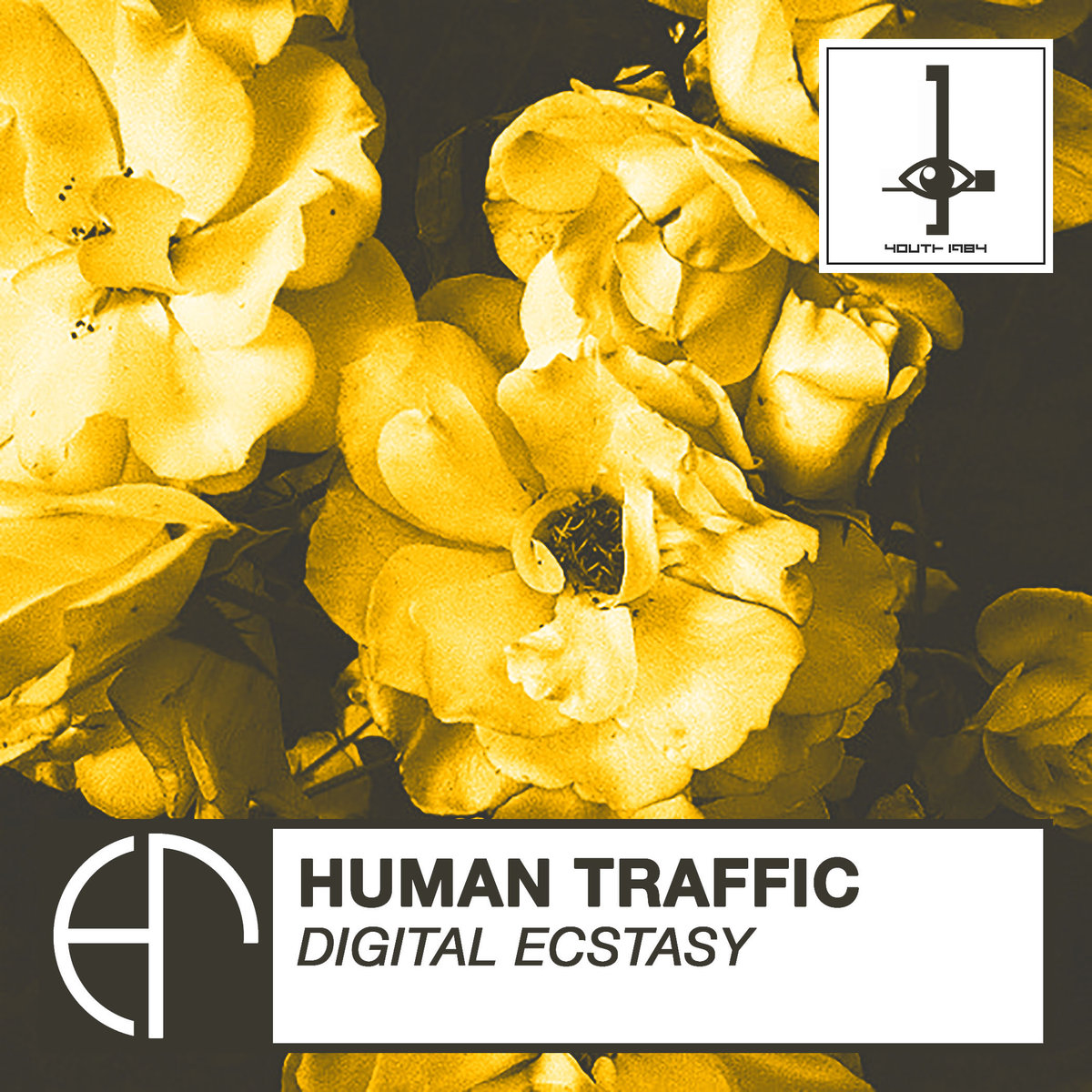 HUMAN TRAFFIC - DIGITAL ECSTASY