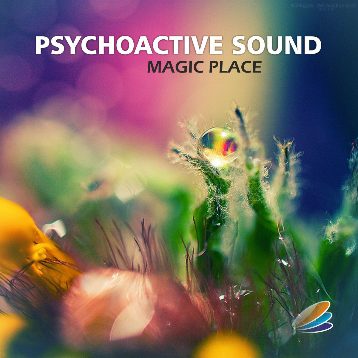 Psychoactive Sound - Magic Place