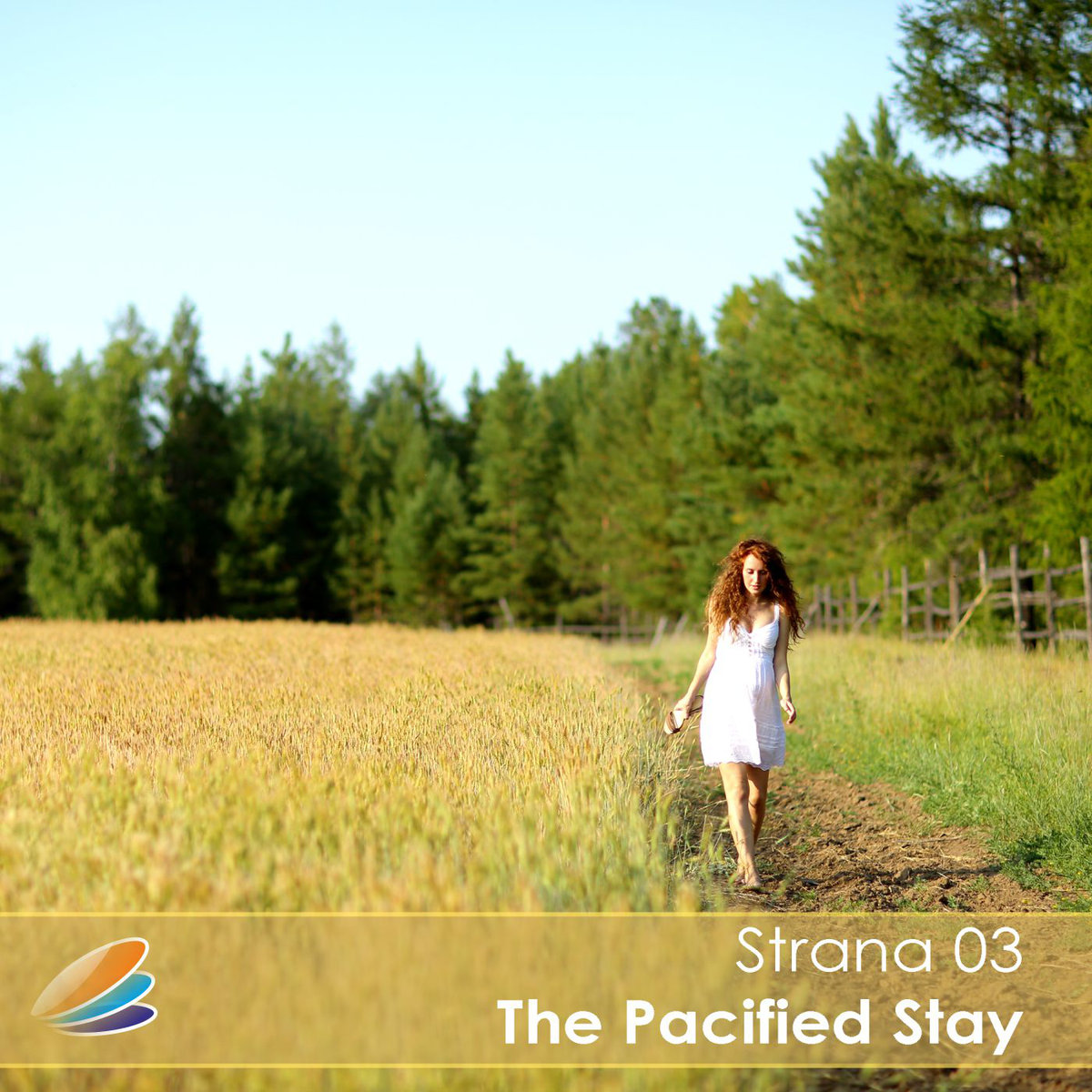 Strana 03 - The Pacified Stay