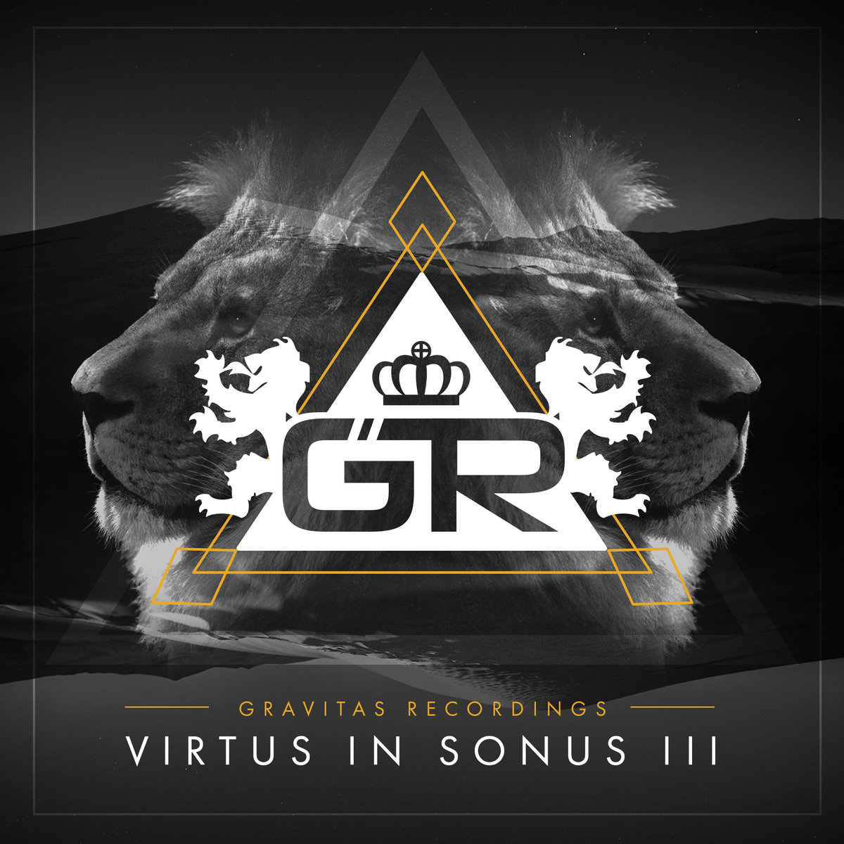Bassline Drift - Drink The Water Down @ 'Virtus In Sonus III' album (Austin)