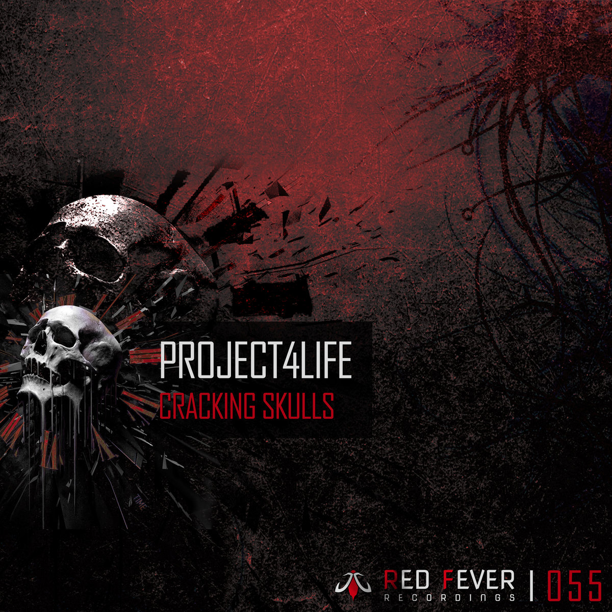 Project4life - Cracking Skulls