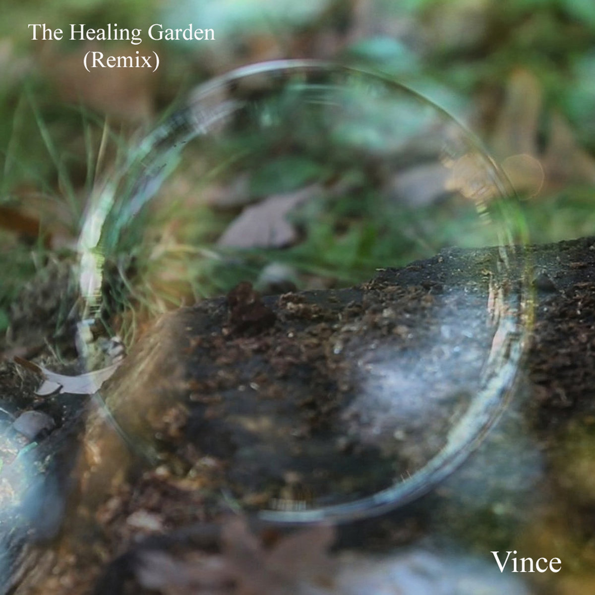 Vince - The Healing Garden (Remix) (pop, pop punk)