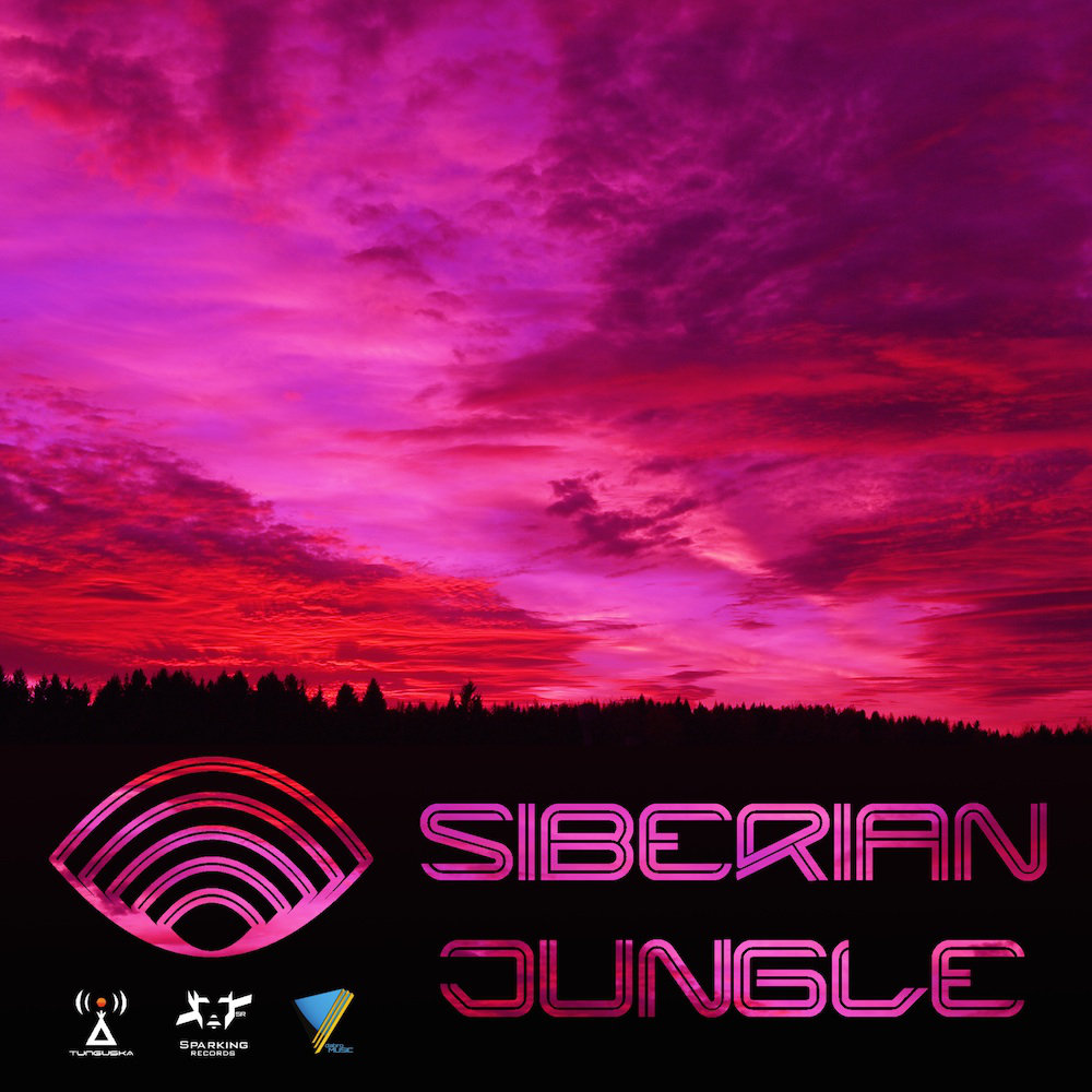 Susanin - Space Cluster #5 @ 'Siberian Jungle - Volume 5' album (drum & bass, electronic)