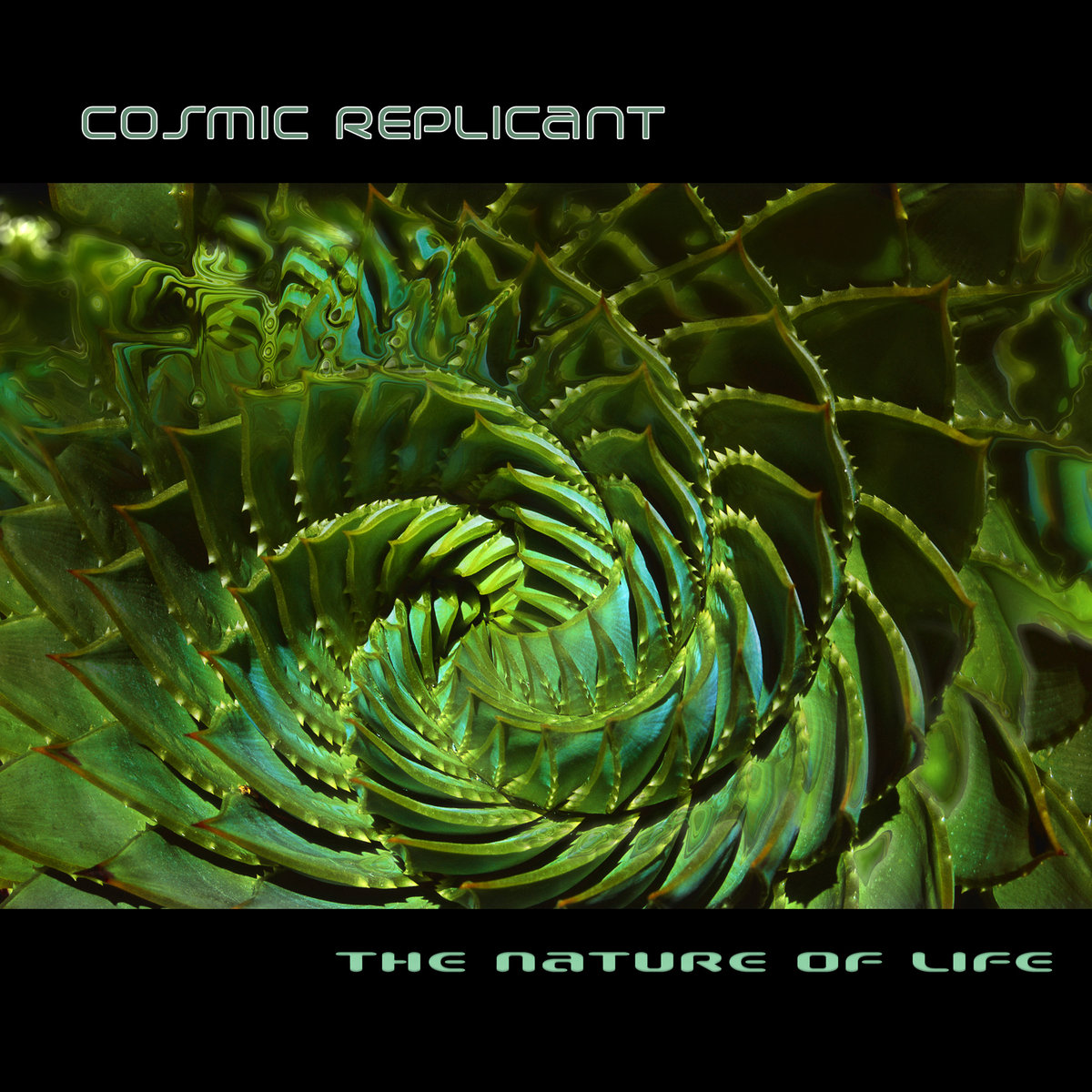 Cosmic Replicant - Rebirth of Nature @ 'The Nature of Life' album (electronic, altar)